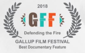 Gallup Film Festival Award